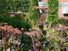 Langedijk-Tuinen-tuinonderhoud-Hoogwoud-06