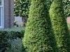 Langedijk-Tuinen-tuinonderhoud-Hoogwoud-12