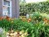 Langedijk-Tuinen-tuinonderhoud-Hoogwoud-08