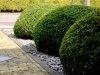 Langedijk-Tuinen-tuinaanleg-tuinontwerp-tuinonderhoud-Zwaag-09